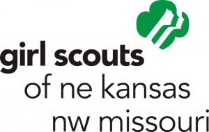 2010 GS logo with council name
